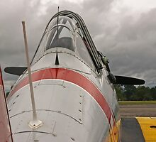 WWII Fighter by Karl R. Martin