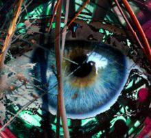 Eye Capture Sticker