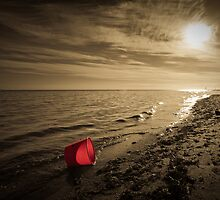 The Red Bucket... by Alistair Wilson