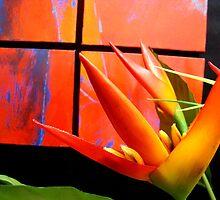 Vibrant by Amber Edwards