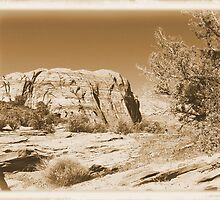 Vintage Utah Desert by hunter22375