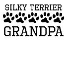 Silky Terrier Grandpa by kwg2200