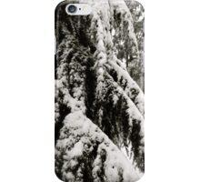 Draped in Splendor iPhone Case/Skin