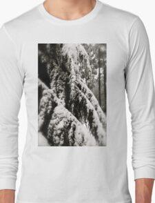 Draped in Splendor Long Sleeve T-Shirt