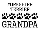 Yorkshire Terrier Grandpa by kwg2200