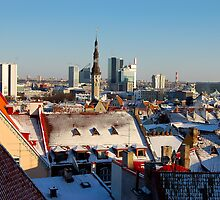 Tallinn's roofs by loiteke