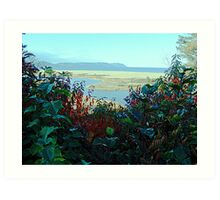 Cape North and Marshlands Art Print