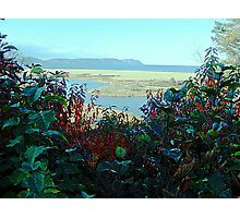 Cape North and Marshlands Photographic Print