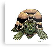 Happy Tortoise Metal Print