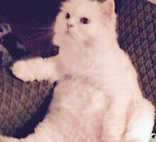 I'm Not Really A Cat. by trisha22