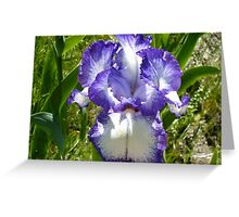 WOW purple perfect Greeting Card