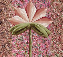 The Hidden Flower 4 by Thecla Correya