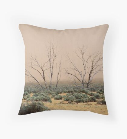 Dust In The Air Throw Pillow