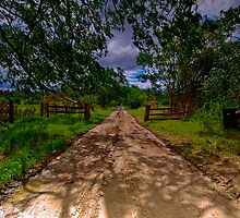 Nearly Home - Theresa Park, NSW by Malcolm Katon