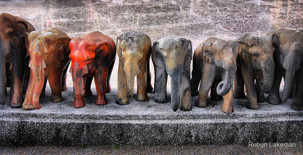 A line of elephants by Robyn Lakeman