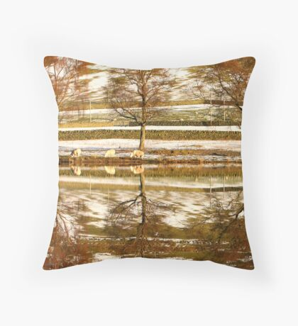 World Turned Upside Down Throw Pillow