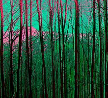 trees in pink by Patricia Ausweger Matz