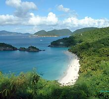 Trunk Bay, St. John USVI by Linda Jackson
