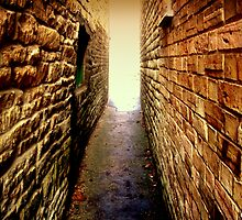 ~The Secret Alley~ by Kate Towers IPA