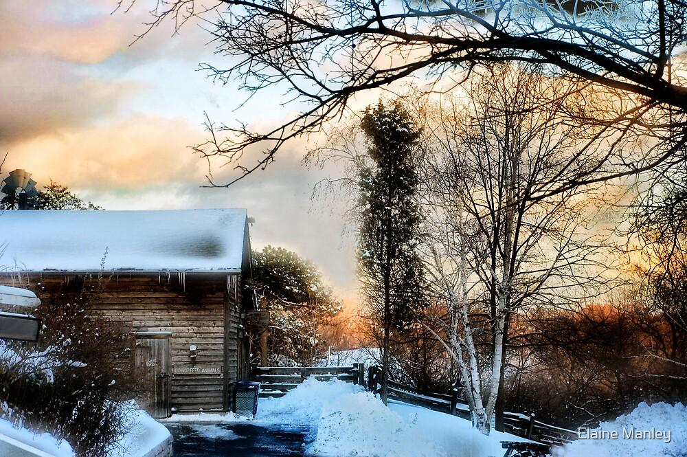 Winter Scene  by Elaine  Manley