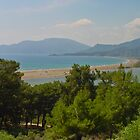 Iztuzu Beach by Robert Abraham