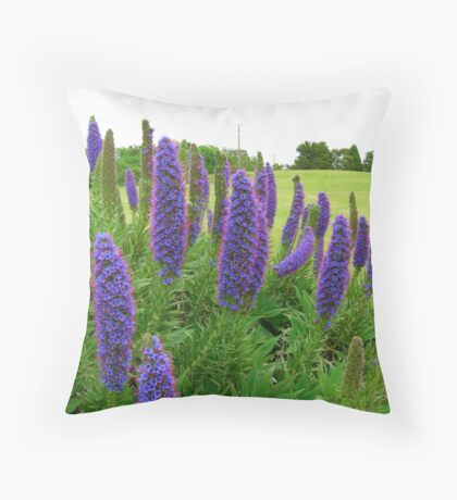 Summer Blues Throw Pillow