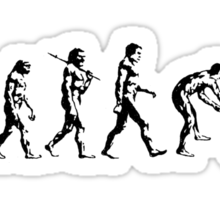 Evolution of the Mind Sticker