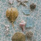 Beach Finds by Bethany Helzer