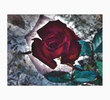Multiexposure Red rose 2 Kids Clothes