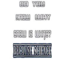 Snow is white? Photographic Print