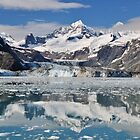 Johns Hopkins Glacier by Mark Heller