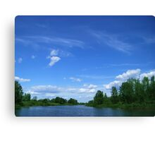 Wild lake before a thunderstorm Canvas Print