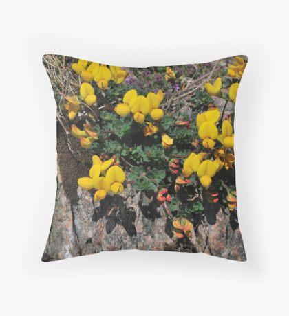 Birdsfoot Trefoil Throw Pillow