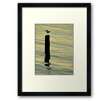 A Sunset Lover ~ Part Two Framed Print