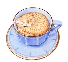 Cat in Coffee by Mariana Musa