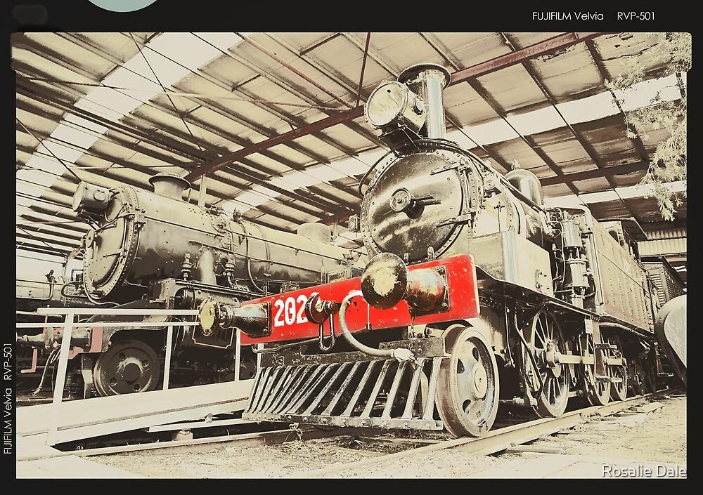 Trains ... retro by Rosalie Dale
