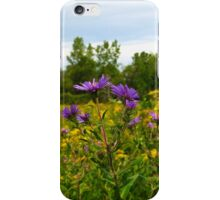 Asters And Goldenrod iPhone Case/Skin