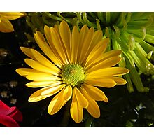 Partly sunny Photographic Print