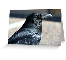 Rio Puerco Raven Greeting Card