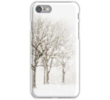 Set of Trees iPhone Case/Skin