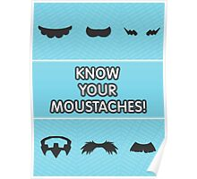 Know Your Moustaches! Poster
