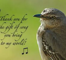 Thank you for the gift of song . . . by Bonnie T.  Barry