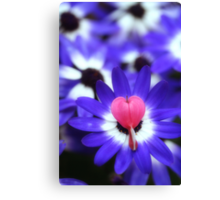 Your Heart Stand Out to Me Canvas Print