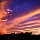 December Sunset by alissasanderson