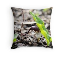 Mouse Tails Throw Pillow
