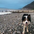 At the Beach with Laddie by Michael Haslam