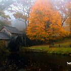 grist mill with ducks by Bob Melgar