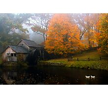 grist mill with ducks Photographic Print