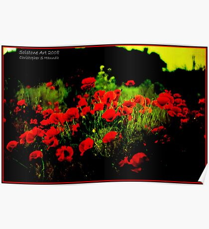 Christmas Poppies Poster