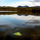 Otter Lake Alaska by Jenny Miller